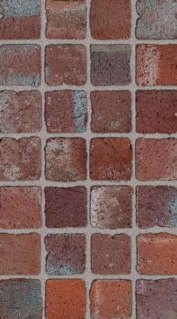 Павета Mozaika